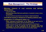 risk management the strategy