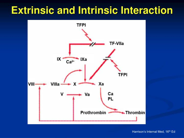 Extrinsic and Intrinsic Interaction