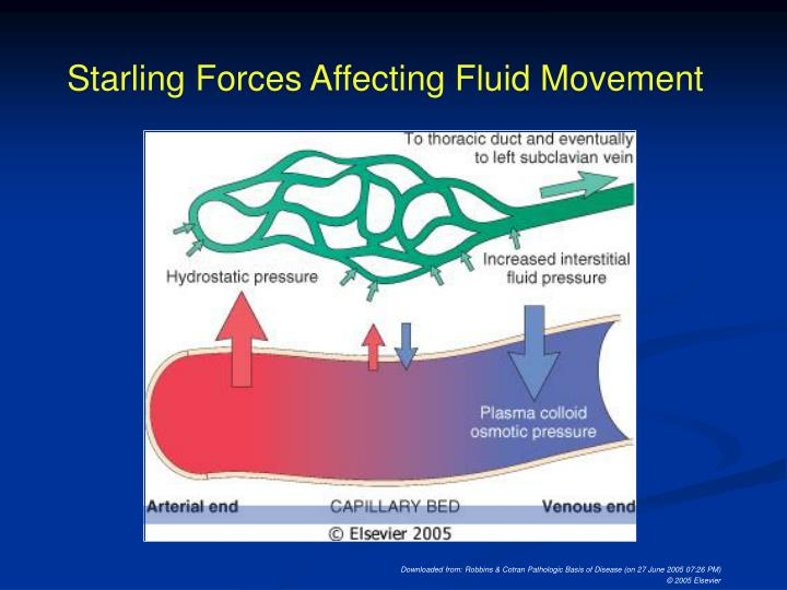 Starling Forces Affecting Fluid Movement