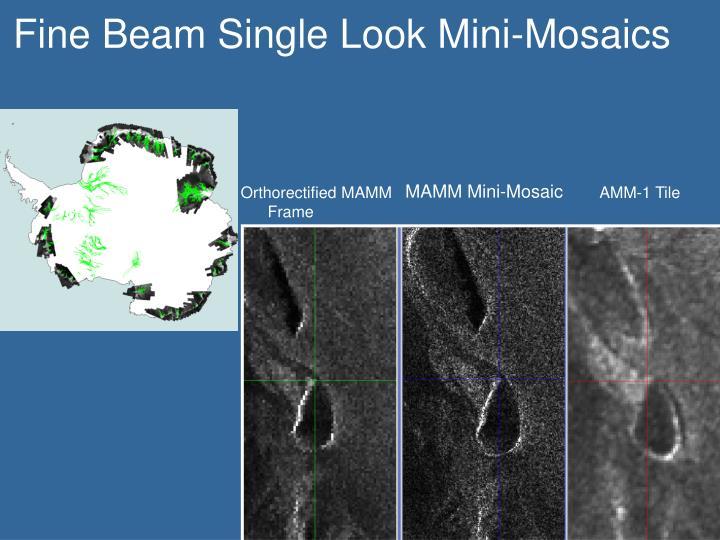Fine Beam Single Look Mini-Mosaics