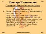 damage destruction common policy interpretation41