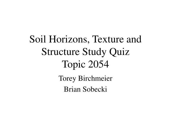 soil horizons texture and structure study quiz topic 2054 n.