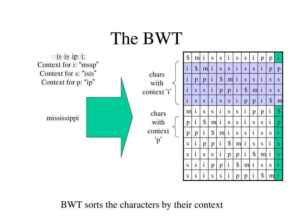 The BWT