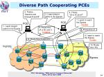 diverse path cooperating pces