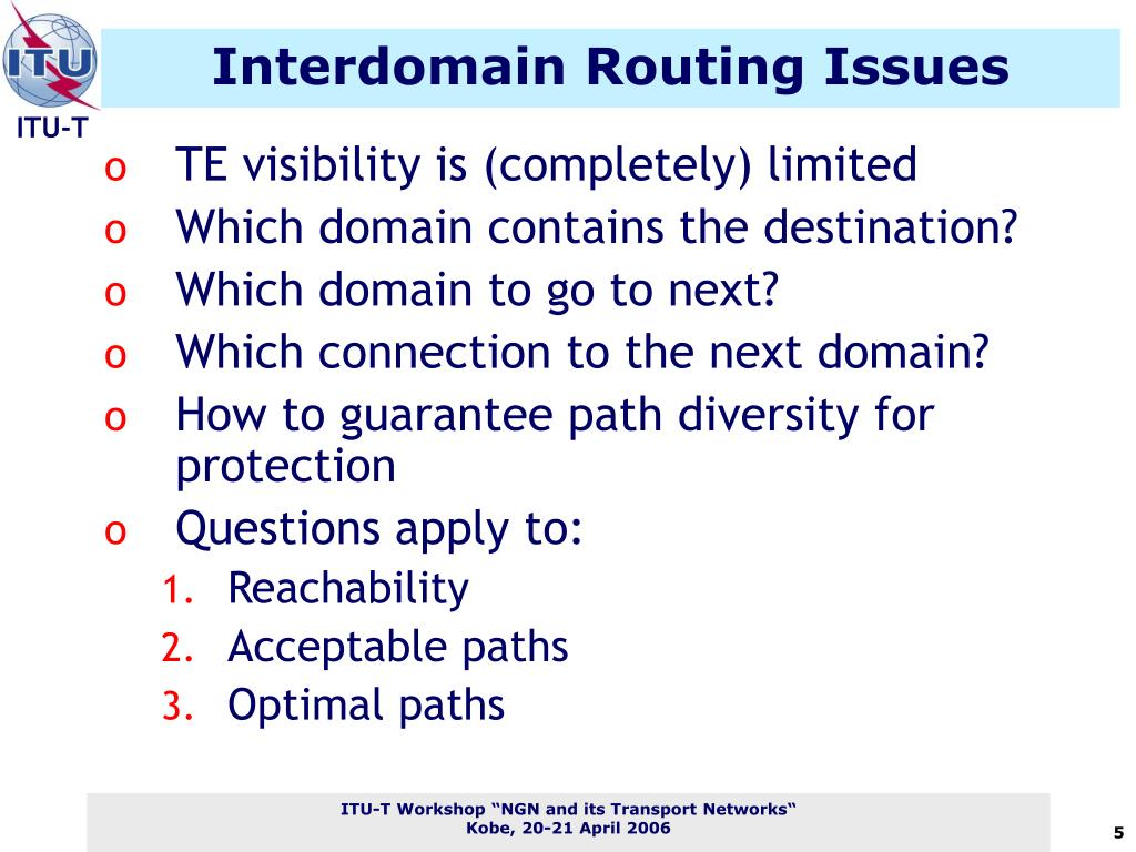 Interdomain Routing Issues