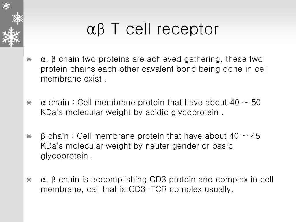 αβ T cell receptor