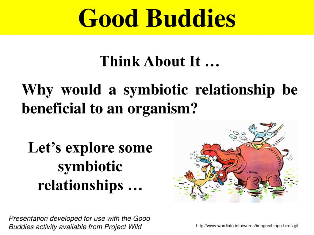 PPT Good Buddies PowerPoint Presentation ID293169 – Symbiotic Relationships Worksheet