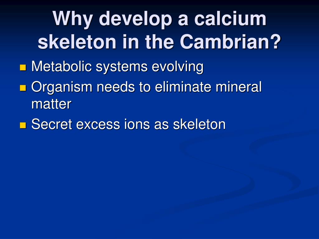 Why develop a calcium skeleton in the Cambrian?