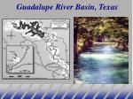 guadalupe river basin texas