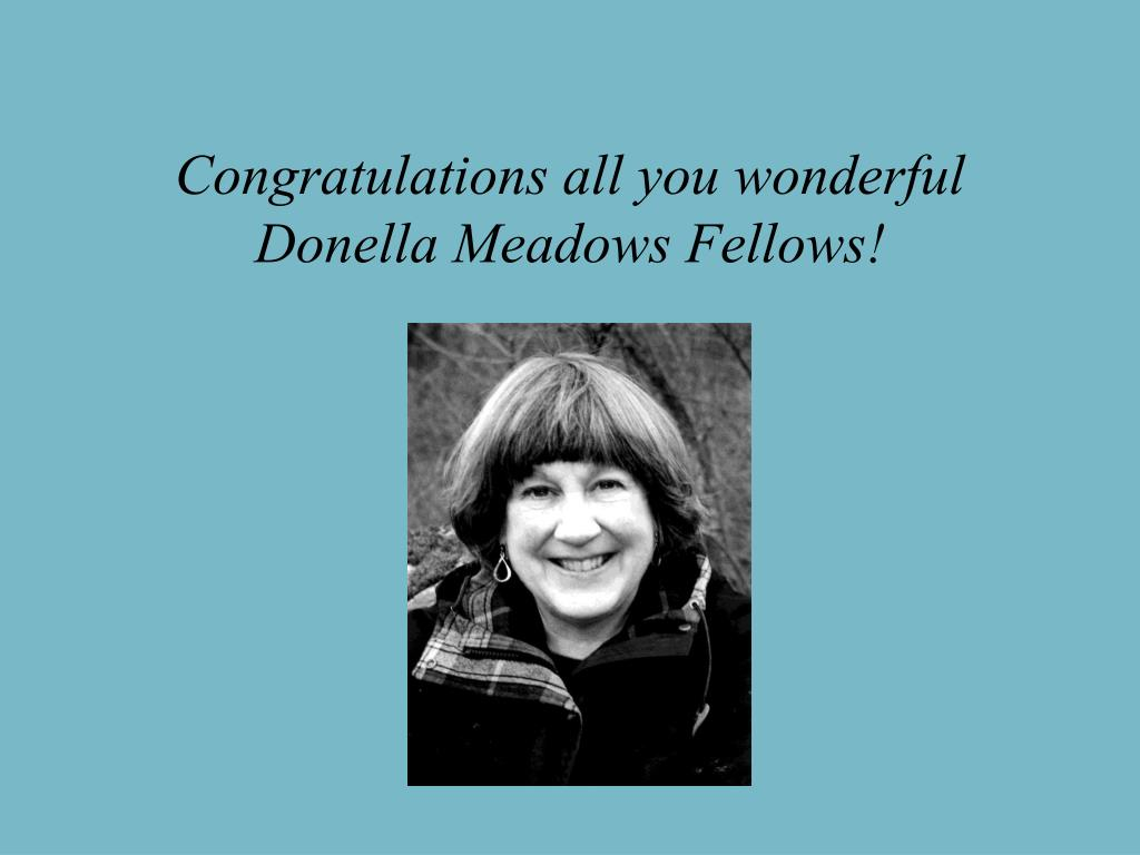 Congratulations all you wonderful Donella Meadows Fellows!