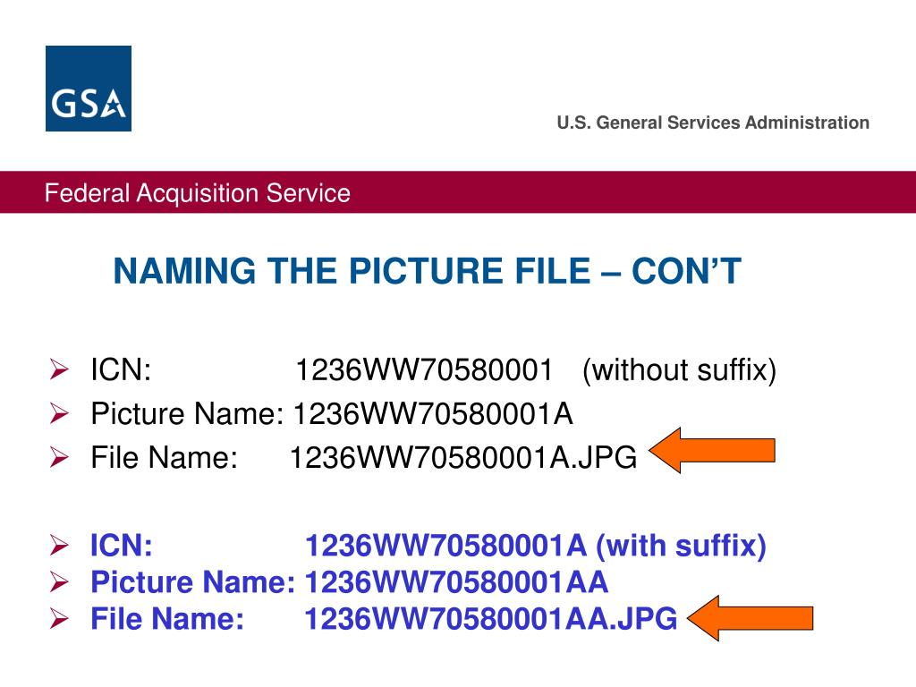 NAMING THE PICTURE FILE – CON'T