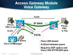 access gateway module voice gateway