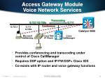 access gateway module voice network services