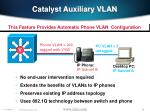catalyst auxiliary vlan