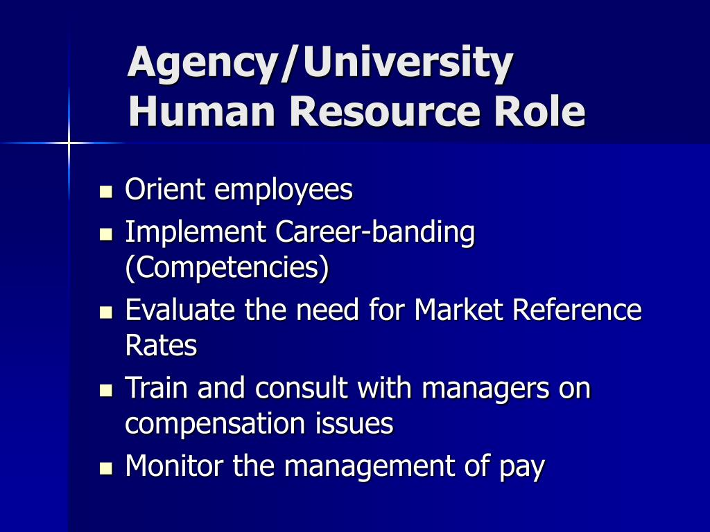 Agency/University Human Resource Role
