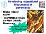 developing international instruments of governance