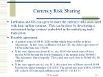 currency risk sharing22