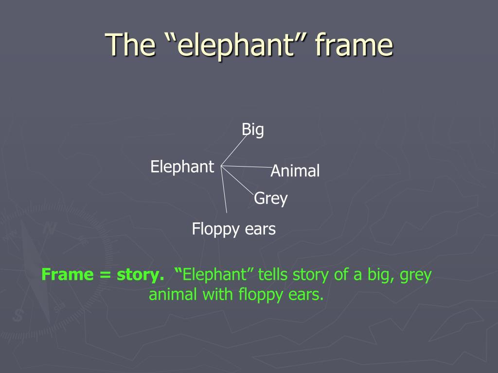 "The ""elephant"" frame"