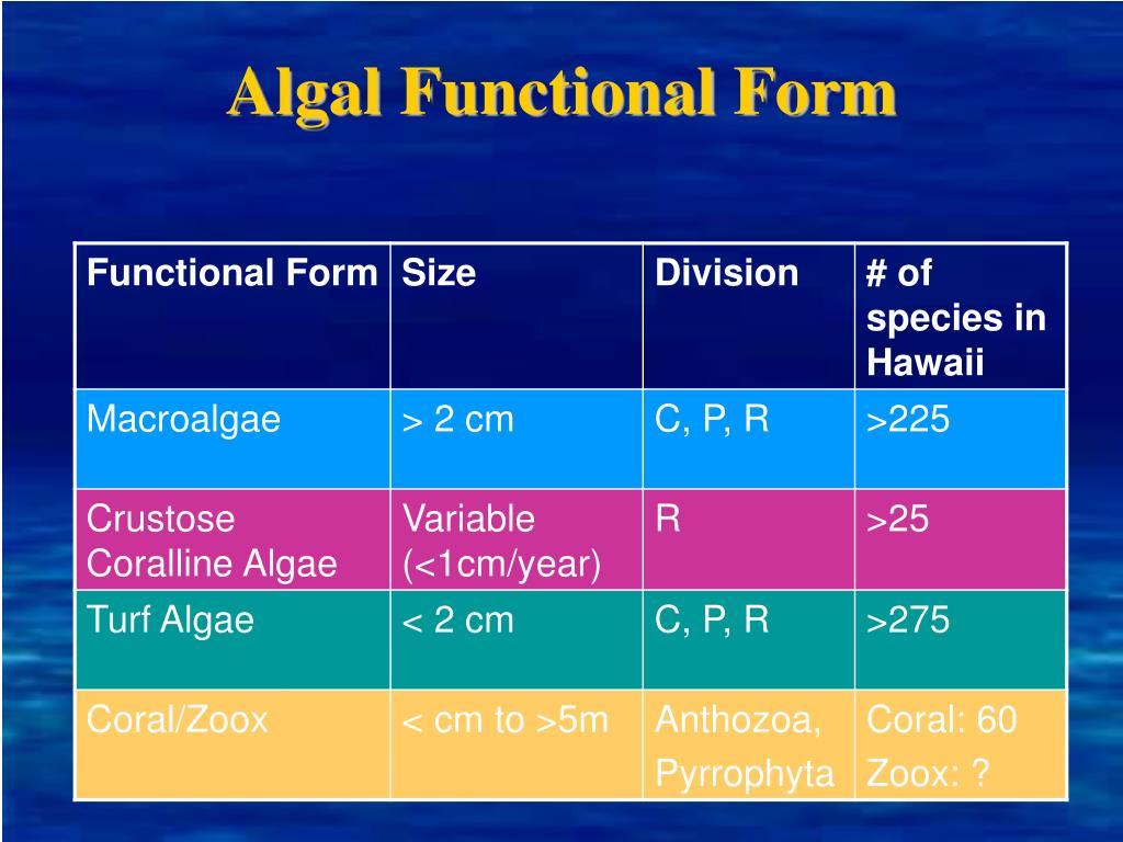 Algal Functional Form