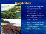 bioindicators