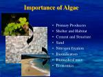 importance of algae