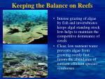 keeping the balance on reefs