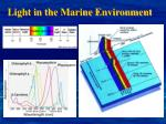 light in the marine environment
