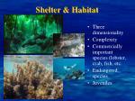 shelter habitat