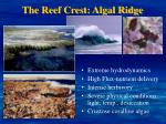 the reef crest algal ridge