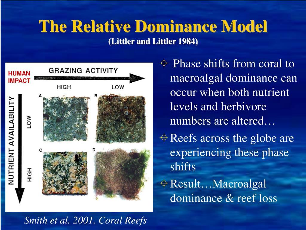 The Relative Dominance Model