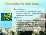 the solution for other algae