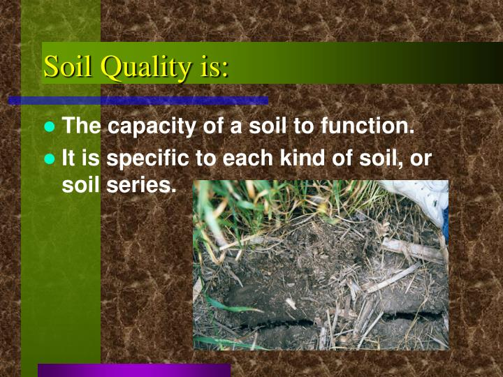 Ppt soil quality test kit powerpoint presentation id for Soil quality