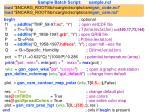 sample batch script sample ncl
