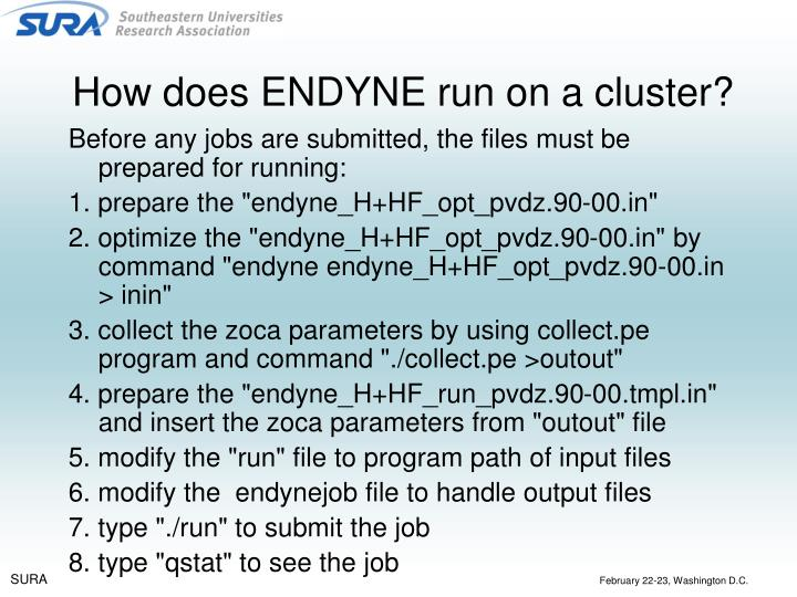 How does ENDYNE run on a cluster?