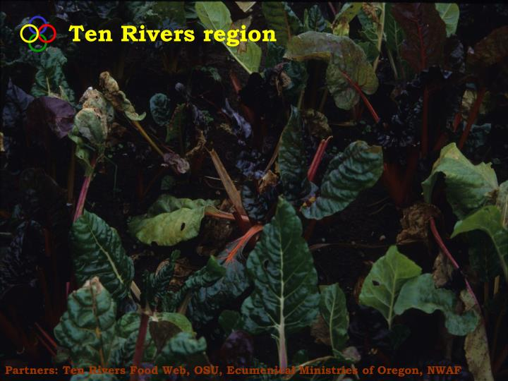 Ten Rivers region
