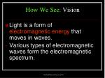 how we see vision