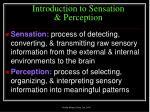 introduction to sensation perception