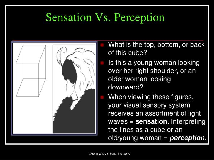 visual sensation and visual perception