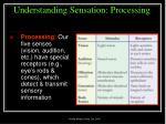 understanding sensation processing