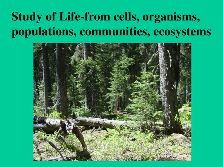 Study of Life-from cells, organisms, populations, communities, ecosystems