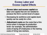 excess labor and excess capital effects