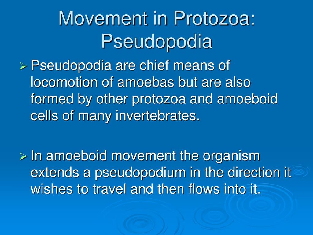Movement in Protozoa: Pseudopodia