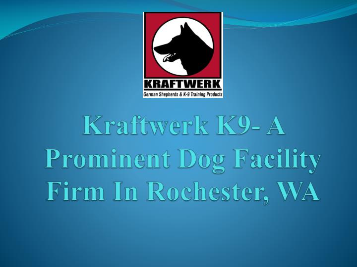 kraftwerk k9 a prominent dog facility firm in rochester wa n.
