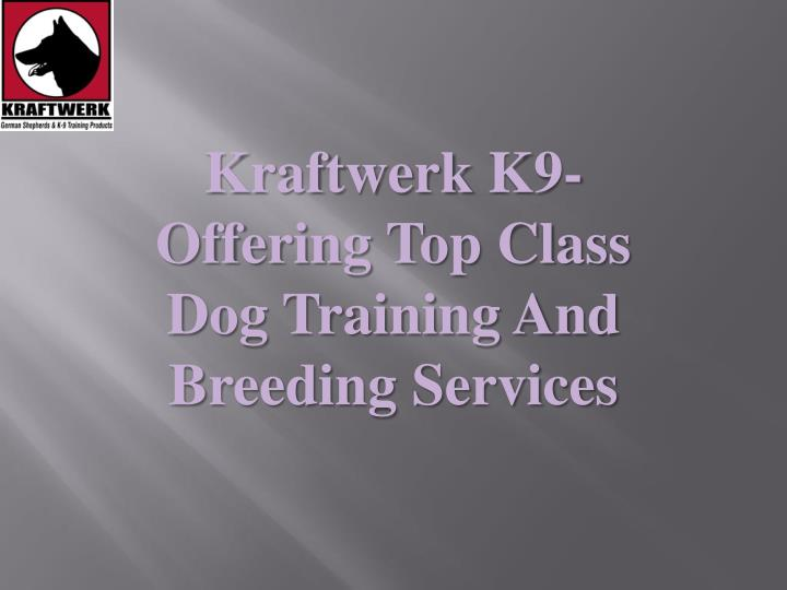 kraftwerk k9 offering top class dog training and breeding services n.