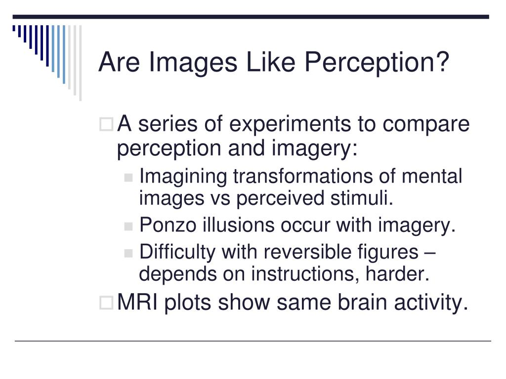 Are Images Like Perception?