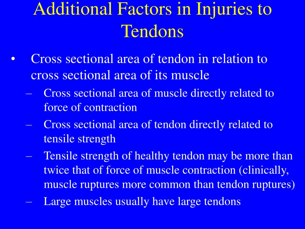 Additional Factors in Injuries to Tendons