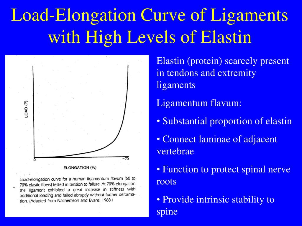 Load-Elongation Curve of Ligaments with High Levels of Elastin