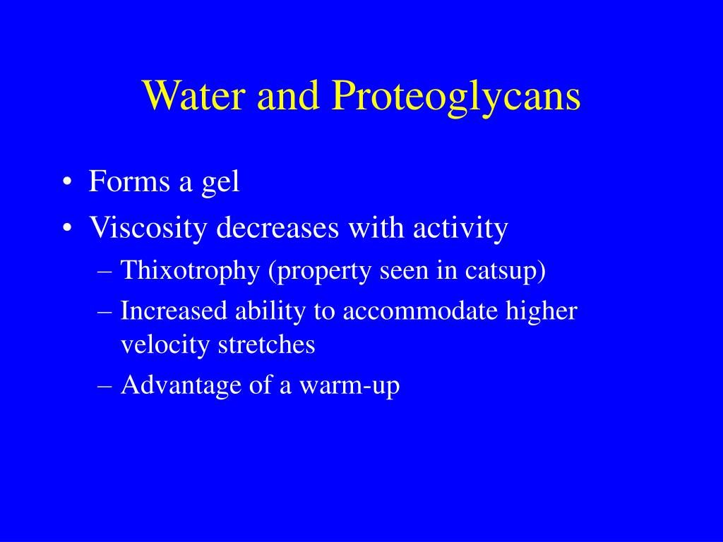 Water and Proteoglycans