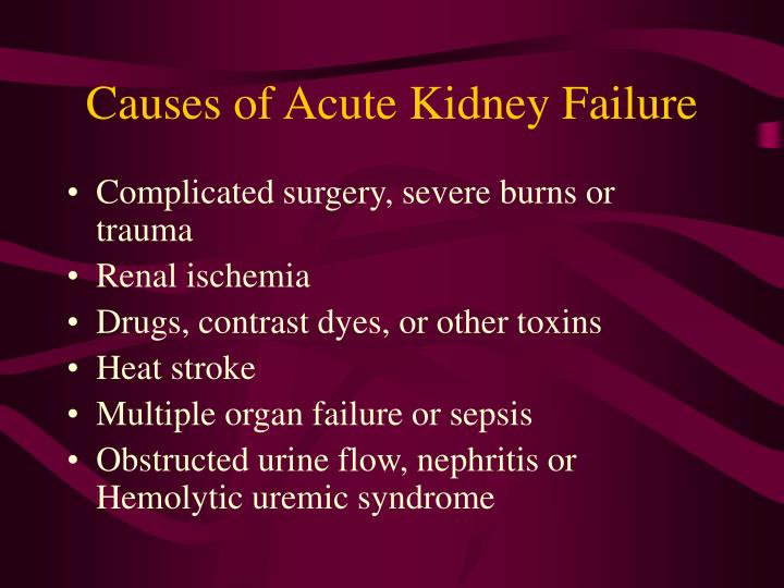 Ppt uremia effects on body systems powerpoint presentation id causes of acute kidney failure toneelgroepblik Choice Image