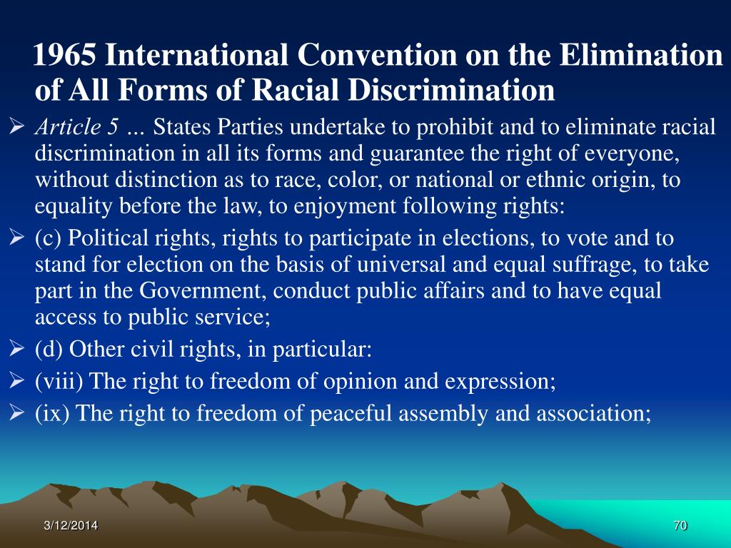 1965 International Convention on the Elimination of All Forms of Racial Discrimination